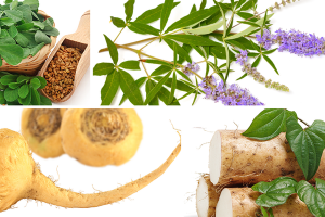 Picture Herbs for progesterone